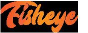 Fisheye Consulting logo